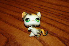 Littlest Pet Shop Calico Cat #27 White Orange Black, Green Eyes, Authentic LPS