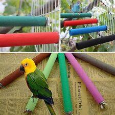 Starling parrot myna pet bird's nest Grind arenaceous stick Rod grinding rods US