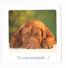 CHIEN  Chiot   CHIENS  carte postale   n°  FFU 0002 Tu me manques... !