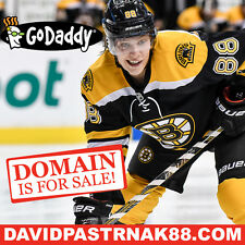 DAVID PASTRNAK 88 .COM - Boston Bruins - Hockey NHL Domain Name - GoDaddy