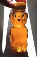 Raw Organic Unfiltered Wildflower Honey Bear Paleo Virginia Wild Beehive 12 oz