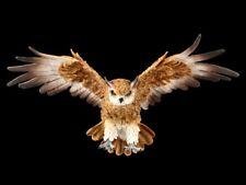 Wandrelief - Waldohreule im Flug - Natur Vogel Eule Dekostatue Wanddeko
