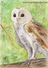 Barn Owl bird art wildlife watercolor print artist realism SFA ACEO Brandy Woods