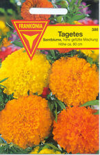 Hohe Tagetes gefüllte Mischung, Samtblume,Studentenblumen,Tagetes erecta,150 Pf