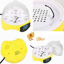 7 Eggs Digital Incubator Clear Hatcher with Fan Poultry Chicken Duck Bird