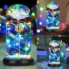 Rose Flower Home Glass LED Night Light Valentine's Day Xmas Decor Festival Gift