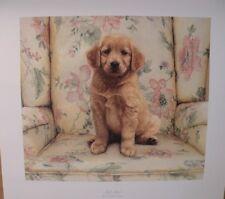 """Sueellen Ross (AP) Print """"SOFT SPOT"""" (Golden Retriever) Pup AP # 49 of 125"""