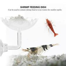 Hot ArrivalAquarium Acrylic Shrimp Dish Food Bowl Feeder Container Tray