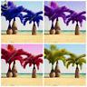 Japan Bottle Palm Seeds Multi-Color Exotic Plants Tree Bonsai Garden Cycas 50Pcs
