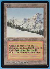 Taiga Beta NM-M Dual Land Rare MAGIC THE GATHERING MTG CARD (ID# 18800) ABUGames