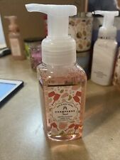 CHAMPAGNE TOAST Gentle Foaming Hand Soap Bath And Body Works