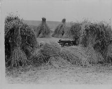 1929 Royal Fusilier Machine Gun on the Rhine Press Photo