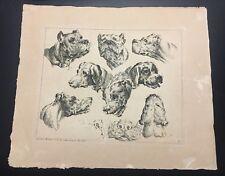 Johann Elias Ridinger Hound Dog Engraving C.1728 Plate No.2