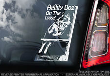 Agility Dog on the Loose! - Car Window Sticker - On Board Sign - Border Collie