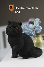 Mr.Z 1/6 Real Animal Series No.8 Exotic Shorthair Cat Garfield Statue 004