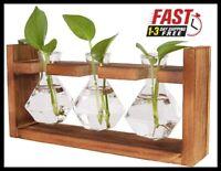 Wooden Plant Terrariums Kit Hydroponics Air Planter Holder with 3 Diamond Glass
