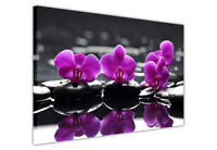 LARGE CANVAS WALL ART PRINTS PURPLE ROSE ON WATER / PICTURES / FLOWER DECORATION