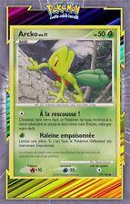 🌈Arcko - DP07:Tempête - 79/100- Carte Pokemon Neuve Française