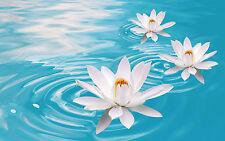 Ethereal Flowers Reiki Attunement 1 & 2/healing/energy/pdf manual on cd + bonus