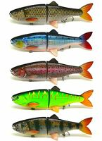 "8"" Pike Muskie Bait Lure Jointed Life-like Carp Shad Trout Perch ""Walk the Dog"""