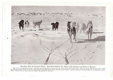 1947 Magazine Page Photo Sled Dogs Husky Caribou Hunting Vintage Photography