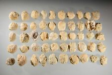 GEODE LOT WHOLE UNOPENED CRACK YOUR OWN 50 PIECE COLLECTION TREASURE HUNT KIDS