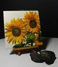 Dekofliese Bildfliese Wandfliese Geschenkidee Sonnenblume Sonnenblumen (020)
