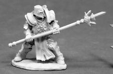 Crusader Defender Reaper Miniatures Dark Heaven Legends Paladin Knight Melee