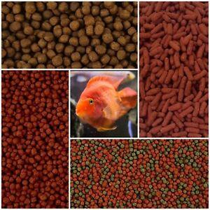 Parrot Cichlid Fish Food - Floating Pellets Sticks Hybrid Red Blood Colour