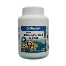 Waterlife Octozin 200 Tablets Dropsy Hole In The Head
