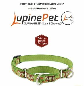 "Lupine Lifetime Training Martingale Dog Collar 3/4"" LIMITED - Squirrels GO NUTS"