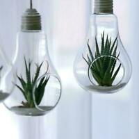 Light Bulbs Hanging Terrarium Glass Vase Succulent Planter Pot Flower K8S7