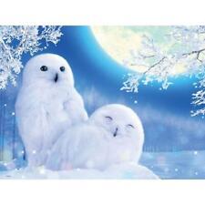 White Owl Diamonds Painting 5D Wall Cross Stitch Craft Kit Birthday Christmas