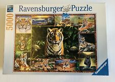 Ravensburger Tiger 5000 Piece Puzzle - Complete as shown in last picture!