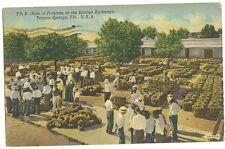 Sale in Progress at Sponge Exchange Tarpon Springs Florida FL Postcard