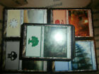 200 Magic the Gathering MTG Basic Land Card Lot Collection!