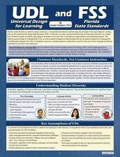 UNIVERSAL DESIGN FOR LEARNING AND THE FLORIDA STATE STANDARDS - CASBARRO, JOSEPH