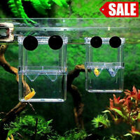 Fish Breeding Box Shrimp Hatchery Fish Tank Incubator Isolation Tool