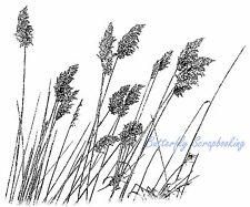 Miscanthus Wild Grass Cling Unmounted Rubber Stamp MAGENTA C0722-L NEW