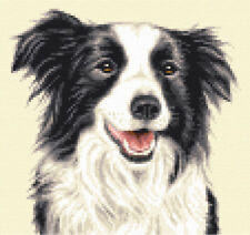 BORDER COLLIE dog, puppy - complete counted cross stitch kit