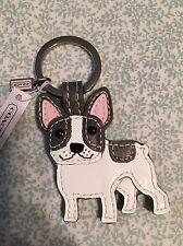 Coach French Bulldog Boston Terrier Dog Key Chain Fob Charm Keychain 61909 New