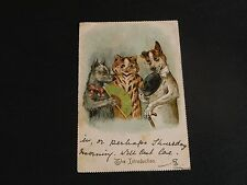ORIGINAL LOUIS WAIN SIGNED TUCK CAT POSTCARD - THE INTRODUCTION - No. 298.