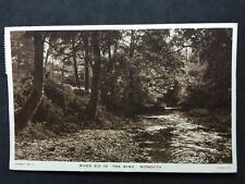 """Vintage Postcard - Devon #171 - RP River Sid In """"The Byes"""" Sidmouth - 1947 Tucks"""