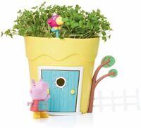 Peppa Pig Croissance Peppa Pot Plante Jouet Enfants