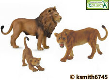 CollectA LION FAMILY solid plastic toy wild zoo animal cat predator * NEW *💥