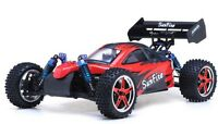 Exceed RC 1/10 Scale 2.4Ghz Brushless PRO Electric RTR Off Road Buggy DD RED