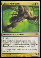 MTG QASALI AMBUSHER - ASSALITORE DI QASAL - ALA - MAGIC