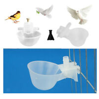 10Pcs Automatic Water Drinker Cups Chicken Duck Poultry Pigeon Bird Water Bowl
