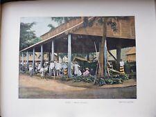 TAHITI:Gravure 19°in folio couleur/ Marché de PAPEETE