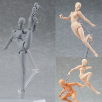 She/he S.H.Figuarts SHF Body Kun SET Body-Chan DX SET Action Figure In Box Hot.